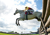 5th Virginia Gold Cup timber stakes - Grinding Speed