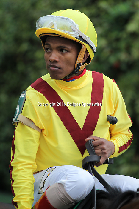 HOT SPRINGS, AR - MARCH 12: Jockey Ricardo Santana Jr. aboard Terra Promessa (5) during post parade in the Honeybee Stakes at Oaklawn Park on March 12, 2016 in Hot Springs, Arkansas. (Photo by Justin Manning)