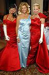 Big Brothers Big Sisters Gala 2009