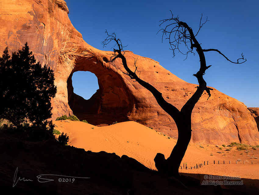 Skeletal Tree at Ear of The Wind Arch, Monument Valley ©2019 James D Peterson.  This arch is in the back country of the Navajo Nation in far northern Arizona.
