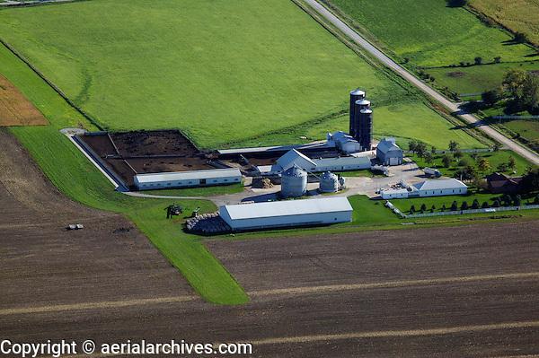 aerial photograph cattle ranch near Iowa City, Iowa