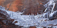 Any snowfall in Zion National Park is very special and short lived. If you are lucky enough to see snowfall in Zion, it will likely be gone by noon the next day.