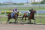 July 19, 2015: Two year old Bay Runner (FL), with jockey Tyler Gaffalione on board, breaks his maiden at Gulfstream Park in Hallandale Beach, FL.  #3 Golden Pirate (FL) takes 2nd. Liz Lamont/ESW/CSM