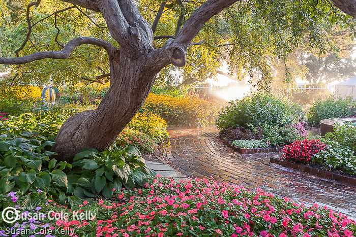 The gardens at Prescott Park in Portsmouth, NH, USA