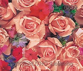 Interlitho, Erica, GIFT WRAPS, paintings, pink roses, flowers(KL7030,#GP#) everyday