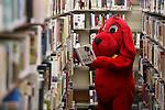 Carson City Library 2017
