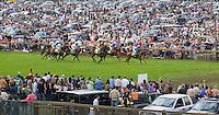 Steeplechase Horse Racing, Far Hills Race Meeting, Moorland Farms, Far Hills, New Jersey
