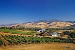 Weisinger's Vineyards & Winery and view across the Rogue Valley to the southern Cascade Mountains; Ashland, Oregon. .#2344-2736