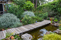 Wooden boardwalk over backyard pond filled with rainwater harvested from roof and stored in cisterns; Judy Adler Garden, Walnut Creek, California