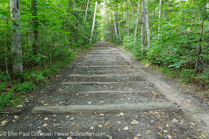 Railroad ties along the old East Branch & Lincoln Railroad. This section of the old railroad bed is now the Lincoln Woods Trail in Lincoln, New Hampshire .