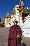 Myanmar, (Burma), Yangon Region, Rangoon: Buddhist monk at the southern entrance to Shwedagon pagoda with chinthe statue | Myanmar (Birma), Yangon-Division, Rangun: Buddhistischer Moench am suedlichen Eingang der Shwedagon Pagode mit Chinthe Statue (loewenaehnliche Figur)