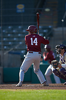 James McConnon (14) of the Saint Joseph's Hawks at bat against the Western Carolina Catamounts at TicketReturn.com Field at Pelicans Ballpark on February 23, 2020 in Myrtle Beach, South Carolina. The Hawks defeated the Catamounts 9-2. (Brian Westerholt/Four Seam Images)