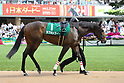 Horse Racing: Aoi Stakes at Kyoto Racecourse