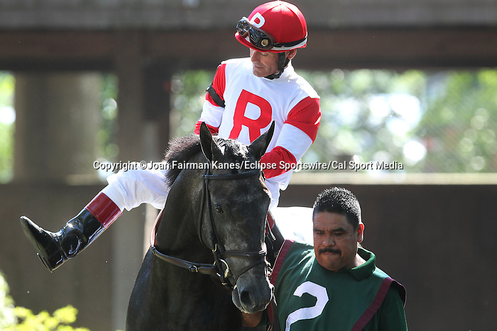July 18, 2015: Chief Kitten, Jon Court up, is one of seven contenders in the Kent Stakes. Syntax (IRE), Junior Alvarado up, wins the grade III Kent Stakes, one and 1/8 miles on the turf for 3 year olds at Delaware Park in Stanton DE.  Trainer is Bill Mott, owner is Randle Glosson.Joan Fairman Kanes/ESW/CSM