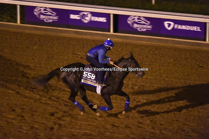 November 5, 2020: Serengeti Empress, trained by trainer Thomas M. Amoss, exercises in preparation for the Breeders' Cup Filly & Mare Sprint at Keeneland Racetrack in Lexington, Kentucky on November 5, 2020. John Voorhees/Eclipse Sportswire/Breeders Cup/CSM