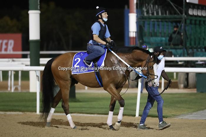 March 25, 2021: Godolphin Mile contender Snapper Sinclair trains on the track for trainer Steve Asmussen at Meydan Racecourse, Dubai, UAE.<br /> Shamela Hanley/Eclipse Sportswire/CSM