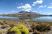 Chile - The North
