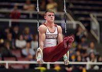 Stanford Gymnastics M