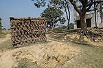 Village life scenes from rural Bihar, India