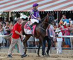 Mendelssohn returns from the race as Catholic Boy (no. 11) wins the Travers Stakes (Grade 1), Aug. 25, 2018 at the Saratoga Race Course, Saratoga Springs, NY.  Ridden by  Javier Castellano, and trained by Jonathan Thomas, Catholic Boy finished 4 lengths in front of Mendelssohn (No. 8).  (Bruce Dudek/Eclipse Sportswire)