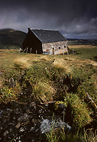 Europe/France/Auvergne/63/Puy-de-Dôme/Parc Naturel Régional des Volcans/Massif des Monts Dores: Le col de la Croix Saint Robert (1426 mètres) et les pâturages
