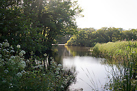 A 15-acre lake is stocked with carp and partly surrounded by species of azaleas and rhododendrons grown from seed brought back from the Himalayas by a family member in the 1900s