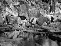 Pool of water with lichen covered rocks on Glen Alpine Creek. Near Fallen Leaf Lake, California
