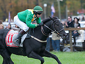 Black Jack Blues is Jumper of the Year