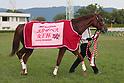 Horse Racing: Queen Elizabeth II Cup