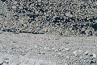 Eisschollen: EUROPA, DEUTSCHLAND, HAMBURG, (EUROPE, GERMANY), 28.01.2006:  Eisschollen auf der Elbe ,