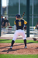 Devin Fish (8) of Eisenhower High School in New Berlin, Wisconsin during the Baseball Factory All-America Pre-Season Tournament, powered by Under Armour, on January 13, 2018 at Sloan Park Complex in Mesa, Arizona.  (Zachary Lucy/Four Seam Images)