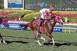 HALLANDALE BEACH, FL - FEB 17:Cash Call Kitten #11 trained by Michael J. Maker with Jose Ortiz in the irons wins the $60,000 Sage of Monticello Claiming Stakes at Gulfstream Park on February 17, 2018 in Hallandale Beach, Florida. (Photo by Bob Aaron/Eclipse Sportswire/Getty Images)
