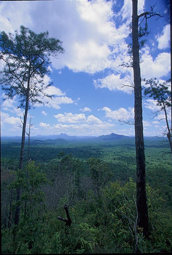 Scenes inside the Cockscomb National Park, Belize