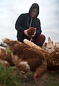 """25/03/16<br /> <br /> Zak Byra with the flock of free range hens.<br /> <br /> Full story here:  <br /> <br /> http://www.fstoppress.com/articles/happy-hens/<br /> .<br /> FARMER Roger Hosking doesn't believe there is such a thing as a bad egg, especially when he's talking about youngsters who have already made some bad choices in life.<br /> <br /> So it seems particularly fitting that this Easter, traditionally a time to celebrate new beginnings, he will spend time with disadvantaged kids, counting and grading more than 20,000 eggs each day as part of his unique """"farm school"""" philosophy.<br /> <br />  <br />  <br /> <br /> All Rights Reserved: F Stop Press Ltd. +44(0)1335 418365   www.fstoppress.com."""