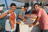 - Tunisia, fishermen and fishing boats in the port of  Tabarka town<br /> <br /> - Tunisia, pescatori e pescherecci nel porto della città di Tabarka