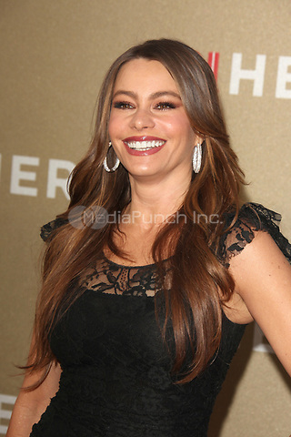 Sofia Vergara at the CNN Heroes: An All-Star Tribute at The Shrine Auditorium on December 11, 2011 in Los Angeles, California.