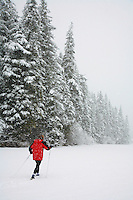 Cross Country skiing across a frozen lake during winter snow storm, Chugach National Forest, Alaska
