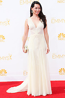 LOS ANGELES, CA, USA - AUGUST 25: Actress Lucy Liu arrives at the 66th Annual Primetime Emmy Awards held at Nokia Theatre L.A. Live on August 25, 2014 in Los Angeles, California, United States. (Photo by Celebrity Monitor)