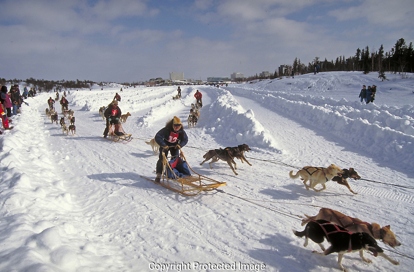 Start of the Canadian Championship Dog Derby in Yellowknife