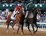 """October 10, 2018 : #5 Lightscameraaction and Brian Hernandez Jr in the JPMorgan Chase Jessamine Grade 2 $200,000 """"Win and You're In Breeders' Cup Juvenile Fillies Turf Division"""" at Keeneland Race Course on October 10, 2018 in Lexington, KY.  Candice Chavez/ESW/CSM"""