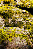 Image Ref: YR128<br /> Location: Cathedral Range State Park<br /> Date: 02.11.15