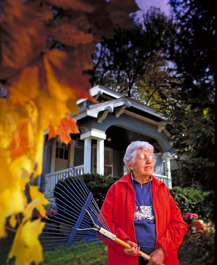 Elderly woman pauses for a moment while raking leaves in her yard Billboard and broadcast must be negotiated, due to talent agreement. Ohio United States.