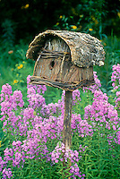 Birdhouse made of bark and twigs with basket weaving graming amid blooming dames rocket, Missouri USA
