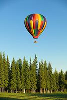 Midnight sun balloon tours, flies passengers over Fairbanks on a calm sunny evening, Fairbanks, Alaska