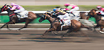 (From left) Horse Gran Master #5 ridden by Joao Moreira, horse Five Stars Agent #9 ridden by Jack Wong Ho-nam and horse Sure Peace #8 ridden by Karis Teetan compete during the race 5 of HKJC Horse Racing 2017-18 at the Sha Tin Racecourse on 16 September 2017 in Hong Kong, China. Photo by Victor Fraile / Power Sport Images