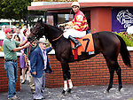 17 October 2009:  Chary and Jockey Juan Levya in the winners circle with trainer Pete D. Anderson (blue jacket) after winning the Calder Oaks Stakes at Calder Race Course in Miami Gardens, FL.