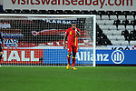 FIFA 2014 World Cup Qualifier - Wales v Croatia - Swansea - 26th March 2013 : Wales Captain Ashley Williams.