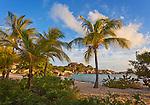 Virgin Gorda, British Virgin Islands, Caribbean <br /> Palm trees shelter the beach on Spring Bay at sunset, Spring Bay National Park