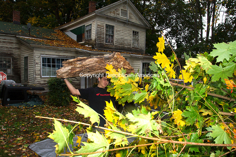 WINSTED, CT - 22 OCTOBER 2016 - 102216JW01.jpg -- Boy scout Tony Santoro heaves a log into the bag of a pickup truck during a communtiy cleanup at 48 Bridge Street. Santoro and other members of Troop 1027 cleaned up the the address along with the home at 38 Wheeler Street as part of a communtiy cleanup benefitting disabled veterans who live in the area.   Jonathan Wilcox Republican-American