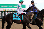 September 14, 2019 : Lebda (#9, Trevor McCarthy) in the post parade of the Iroquois Stakes at Churchill Downs, Louisville, Kentucky. He finished third.  Trainer Claudio A. Gonzalez, owner Joseph E. Besecker. By Raison d'Etat x Lenders Way (Hook and Ladder).  Mary M. Meek/ESW/CSM